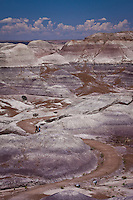 The Painted Desert in the Petrified Forest National Park along Route 66, near Holbrook Arizona.
