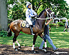 Big Momma before at Delaware Park on 7/17/14