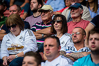 Swansea Fans during the Premier League match between Southampton and Swansea City  at St Mary's Stadium in Southampton, England, UK. Saturday 17 September 2016