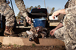 January 2, 2012. Chapel Hill, NC.. (left to right)  Boo Huskins and Chris Mostiller , of Marion, NC, cut the antlers off a buck on the racks out back of Norman's Deer Processing & Sausage Making. Hunters who bring deer for processing must skin and clean the deer before Norman takes it for curing and butchering.. Norman's Deer Processing & Sausage Making has been serving private customer's for over 20 years. Hunters bring their deer in to be processed into all cuts of venison and several types of sausage.