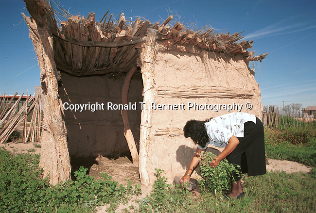 Indian woman weeds hogan, Navajo hogan, Hogans wooden poles tree bark,Native American Woman, mud, hogan permanent structures, hogan dark gloomy no windows small hole ceiling for smoke,hogan door faced east, welcome the rising sun, Hogans one room, Arizona, State of Arizona, Southwest, desert, 48th State, Last of contiguous states,Grand Canyon, Indian reservations, four corners, desert landscape, exrophyte, western United States, Southwest, Mountains, plateaus, ponderosa pines, Colorado River,  Mountain lion, Navajo Nation, No daylight savings time, Arizona Territory, Arizona, AR, Ariz, Airzona, Arizonia, Arizone, AZ, Fine Art Photography by Ron Bennett, Fine Art, Fine Art photography, Art Photography, Copyright RonBennettPhotography.com ©