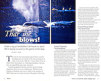 Two Page Whale Spread inside Canadian Geographics TRAVEL & ADVENTURE  Magazine.