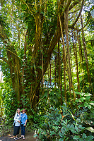 Two women stand beneath a banyan tree at Hawaii Tropical Botanical Garden near Onomea Bay in Papa'ikou near Hilo, Big Island of Hawai'i.