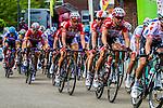 Lotto Belisol Stage 3 Buchten - Buchten, Ster ZLM Toer, Buchten, The Netherlands, 20th June 2014, Photo by Thomas van Bracht / Peloton Photos