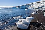 Cape Bird, Beaufort Island, Bird Glacier, Adelie Penguins. Ross Island Antarctica.