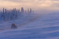 Heavy winds and snow blow across the James Dalton Highway, Arctic, Alaska