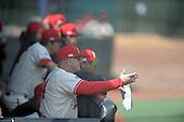 baseball-Szefc 2015