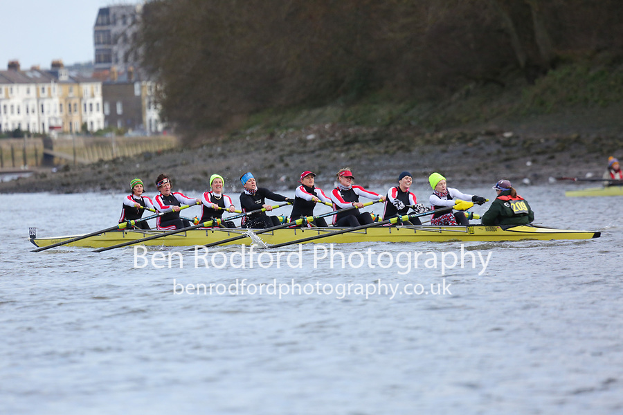 Crew: 209   Mortlake Anglian &amp; Alpha   WMasB-E (WMasD)<br /> <br /> Quintin Head 2019<br /> <br /> To purchase this photo, or to see pricing information for Prints and Downloads, click the blue 'Add to Cart' button at the top-right of the page.