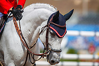 AUT-Max Kühner rides Chardonnay during Round B of the FEI World Individual Jumping Championship. 2018 FEI World Equestrian Games Tryon. Sunday 23 September. Copyright Photo: Libby Law Photography