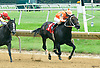 Winplaceorshowono winning at Delaware Park on 7/12/17