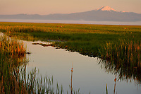 Mount Scott, Williamson River, Klamath Marsh National Wildlife Refuge, Oregon.  June.