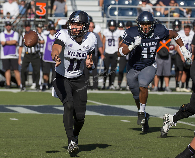Weber state quarterback Kaden Jenks is chased by Nevada's James Fotofili during the Nevada vs Weber State football game in Reno, Nevada on Saturday, Sept. 14, 2019.