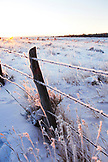 USA, Utah, Bryce Canyon City, Hwy 89, detail of grass an a barbed wire fence covered in frost at sunrise, near Bryce National Park