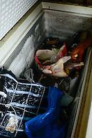 NIGERIA, Lagos, Frozen Food, selling of illegal imported chicken meat from Europe on the Arena market, the meat is smuggled from Benin / NIGERIA LAGOS, Arena Markt , Verkauf von illegal importiertem Huehnerfleisch aus der EU, das Fleisch wird aus Benin nach Nigeria geschmuggelt