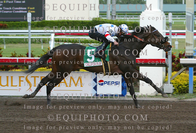 Shaggy Mane #5 with Mark Guidry riding won the Sunshine Millions Filly & Mare Sprint at Gulfstream Park.  Photo By Jessica Denver/EQUI-PHOTO. 1/27/07
