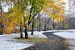 Unexpected Autumn Snow, Colorful Trees And Walking Path In The Park, Sharon Woods, Southwestern Ohio, USA