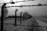 Auschwitz / Poland 2011.Close-up of a barbed wire fence in Auschwitz-Birkenau, the largest Nazi extermination camp in operation during World War II..Photo Livio Senigalliesi