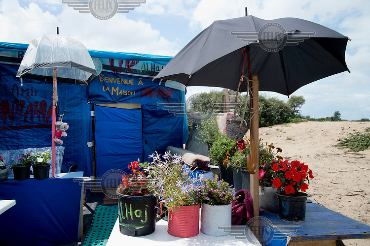 A shelter and garden in the so-called 'Jungle' refugee camp.