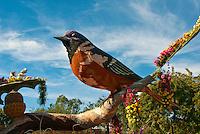 """Family First"", Rose Parade; 2010, Pasadena; CA, Odd Fellows, Rebekah's, Birds, Float, Rose Parade, Tournament of Roses, LA California; Los Angeles High dynamic range imaging (HDRI or HDR)"
