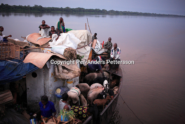 BOKONDO, DEMOCRATIC REPUBLIC OF CONGO APRIL 6: Unidentified people on a boat with destination Kinshasa on April 6, 2006 in Bokondo, Congo, DRC. Passengers sleep in the open, often on top of maize bags or other cargo. The boat carries many animals such as pigs, goats, crocodiles, monkeys, lizards, etc. The Congo River is a lifeline for millions of people, who depend on it for transport and trade. The journey from Kisangani to Kinshasa is about 1750 kilometers, and it takes from 3-7 weeks on the river, depending on the boat. During the Mobuto era, big boats run by the state company ONATRA dominated the traffic on the river. These boats had cabins and restaurants etc. All the boats are now private and are mainly barges that transport goods. The crews sell tickets to passengers who travel in very bad conditions, mixing passengers with animals, goods and only about two toilets for five hundred passengers. The conditions on the boats often resemble conditions in a refugee camp. Congo is planning to hold general elections by July 2006, the first democratic elections in forty years..(Photo by Per-Anders Pettersson/Getty Images)...