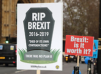 FEB 6 Pro and Anti Brexit Protesters London