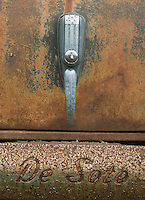 The trunk handle and bumper are featured in this close-up of a rustung DeSoto in afield in Door County, Wisconsin