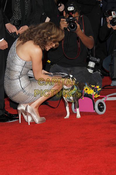 "JENNIFER LOPEZ .""The Back-up Plan"" Los Angeles Premiere held at the Regency Village Theatre, Westwood, California, USA, 21st April 2010. .arrivals full length one shoulder silver dress sleeve shiny shimmery clutch bag shoes dog animal peep toe trolley flowers lead leash bending kneeling down stroking petting side.CAP/ADM/MJ.©Michael Jade/AdMedia/Capital Pictures."