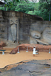 Buddha statue figure, Gal Viharaya, UNESCO World Heritage Site, the ancient city of Polonnaruwa, Sri Lanka