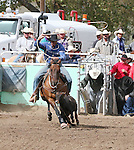 David Bradley in the 40-50 age group of calf roping.