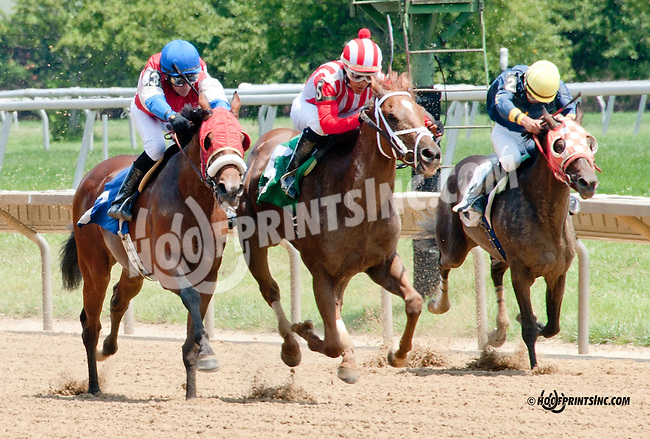 Champion Sound winning at Delaware Park on 7/10/14