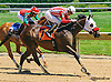 Fit For A Lady winning at Delaware Park on 6/24/15