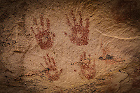 Many Hands Pictograph - Utah
