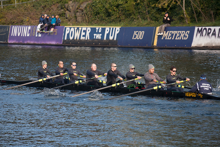 Rowing, Seattle, The Husky Open, April 4, 2015, Western Washington University, Montlake Cut, Mens eight, College M Open 8, crew, Washington State, Pacific Northwest, rowers, racing, sports, water sports, rowing boats, rowing race, regatta, competition,