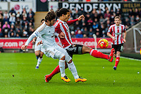 Alberto Paloschi of Swansea City  and Virgil van Dijk of Southampton  in action during the Barclays Premier League match between Swansea City and Southampton  played at the Liberty Stadium, Swansea  on February 13th 2016
