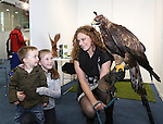 With Compliments.  Attending the Fly Shannon Holiday Show in the UL Sports Arena at the weekend were Noah Carey(2), Newcastlewest, Katie Lyons(10), Adare and Susan Kirwin, Adare Country Persuits with a Golden Eagle named Caelin.<br />  Photograph: Liam Burke/Press 22