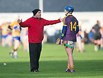David Fitzgerald, manager of Wexford, has a word with player Kevin Foley during the Jack Lynch Memorial game at Tulla. Photograph by John Kelly.