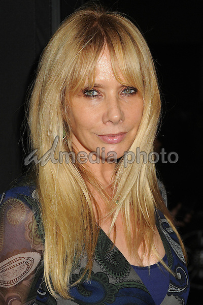 "27 October 2015 - Beverly Hills, California - Rosanna Arquette. ""Trumbo"" Los Angeles Premiere held at the AMPAS Samuel Goldwyn Theater. Photo Credit: Byron Purvis/AdMedia"