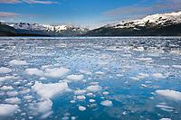 Brash ice from Surprise glacier, Harriman Fjord, Prince William Sound, southcentral, Alaska.