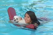 Dog Swim Wilson Park Pool 9/3/2018