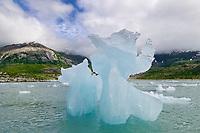 Glacier icebergs, Nellie Juan lagoon, Western Prince William Sound, Alaska