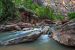 The Virgin River, Zion National Park, Utah, USA