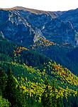 Widok na Czerwone Wierchy z Doliny Małej Łąki, Tatry Zachodnie, Polska<br /> View of the Czerwone Wierchy from the Dolina Małej Łąki, Western Tatra Mountains, Poland