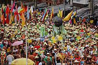Milhares de brincantes acompanham o Arraial do Pavulagem pelas cidades.O Instituto Arraial do Pavulagem é uma organização autônoma da sociedade civil, sem fins lucrativos, criada em 2003. Ao longo de sua existência, o Instituto tem desenvolvido ações de educação cultural na Amazônia que contribuem para transmitir e fortalecer o saber oral tradicional, com uma leitura contemporânea através de linguagens como a dança, a música e a visualidade cênica. Em quase uma década de atividades, o Instituto coloca na rua seus principais projetos: os cortejos de cultura popular Cordão do Peixe-Boi (último domingo de março), Arrastão do Pavulagem (junho) e Arrastão do Círio (outubro). Os cortejos somam-se a oficinas, palestras, seminários, pesquisas, projetos de extensão, rodas cantadas, ensaios, mostras e shows, que valorizam e propagam as manifestações artísticas da Amazônia.Belém, Pará, Brasil.<br /> Foto Ana Mokarzel.<br /> 11/10/2008