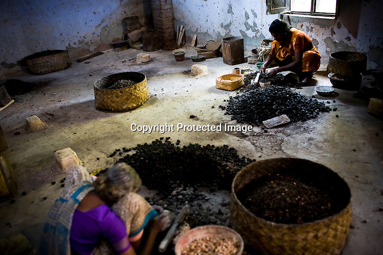Women are seen shelling raw cashews in cashew processing factory in Prassala, Kanyakumari district in Tamil Nadu, India.. .An estimated number of 500,000 women process cashews for a living in Tamil Nadu and Kerela. 2 million people are employed by cashew industry across India making it the world's biggest exporter of shelled cashews. .The working conditions in these processing units are way below industry standards and violates the basic rights. Wages are as low as Rs. 50 (US $1) per day. The problems for these women is not restricted to low wages. Many women are being injured by their jobs as the factory owners cut corners with health and safety. Oil released during the cashew shelling process is highly caustic, leading to common cases of dermatitis, blistering and discolouration of workers' skin. Women working in these units suffer from pains in their leg muscles, backs and knee joints after squatting positions on mud or concrete floors. It is very rare to find tables and chairs provided on shelling duty..Cashew workers' main concern is to increase their earnings and provide better working conditions. .Photo: Sanjit Das