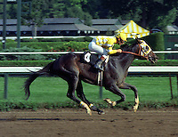 Royal Roberto, by Roberto, winning the DeWitt Clinton Stakes at Saratoga