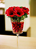 Red rose vase detail, Hotel Bel Ami