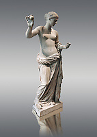 The Venus of Arles (  Greek Goddess Aphrodite) is a 1.94-metre-high (6.4&nbsp;ft) marble sculpture of Venus probably a copy of the Aphrodite of Thespiae by 4th century BC Greek Athenian sculpture Praxiteles . Louvre Museum, Paris. <br /> The style of the Venus of Arles, like the Venus de Milo, is not a fully nude figure both having draped clothes from the waist down. The first known example of a totally nude Venus is the 4th century BC  Aphrodite of Cnidus by.Praxiteles  The Venus of Arles was probably an earlier statue by Praxiteles known as the Aphrodite of Thespiae . <br /> The venus of Arles was found in 1651 by workmen digging a well in Arles. In 1681 it was given to Louis XIV to decorate the Galerie des Glaces of Versailles. The statue was moved to the Mus&eacute;e du Louvre after the French Revolution.