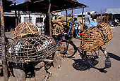 Tabora, Tanzania. Chickens in hand made latticework basket cages; market.