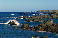 Cape Bonavista, Newfoundland and Labrador, Canada - Rugged Atlantic Coastline on the Bonavista Peninsula