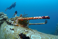 A female diver investigating the machine guns of a B-25 Mitchell Bomber plane wreck, Madang, Pacific Ocean, Papua New Guinea (MR), MR